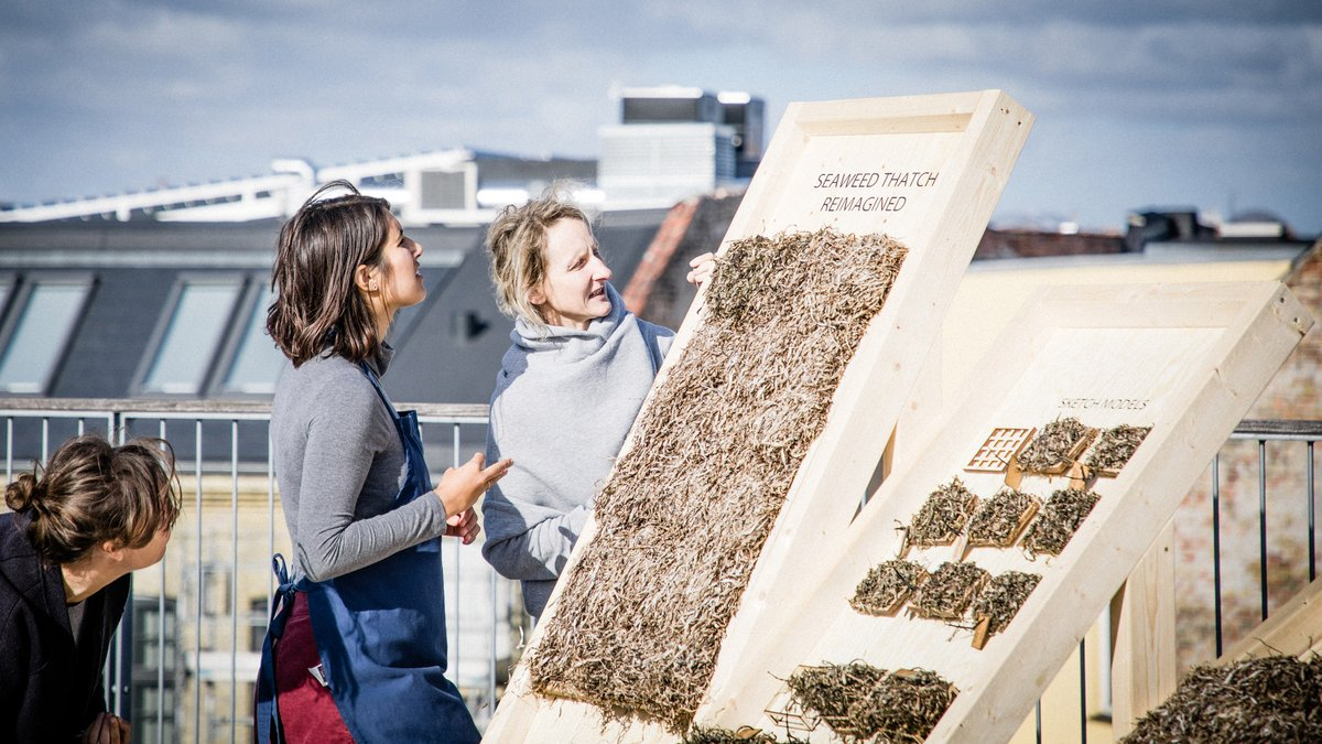 Viking-style seaweed thatch updated into prefab panelling: at.dezeen.com/2XPKLAF