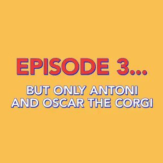 Find us something more pure than Antoni's love for corgis. We'll WAIT🐶💖