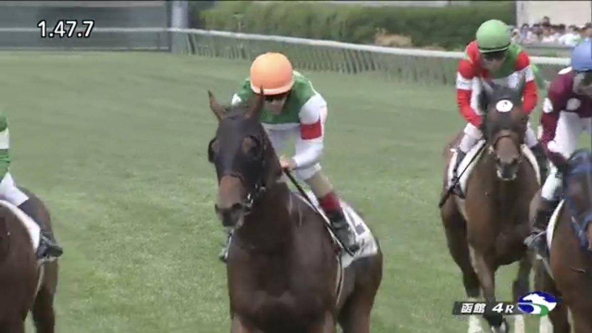 函館4Rを優勝したのは、#ソルドラード!  2017年の日本ダービー(GI)馬 #レイデオロ の弟が初勝利!おめでとう!  #うまび