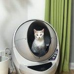 ついに猫が宇宙船に乗って出発か?