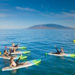 Image for the Tweet beginning: SUP HIIT (Stand-Up Paddleboard High