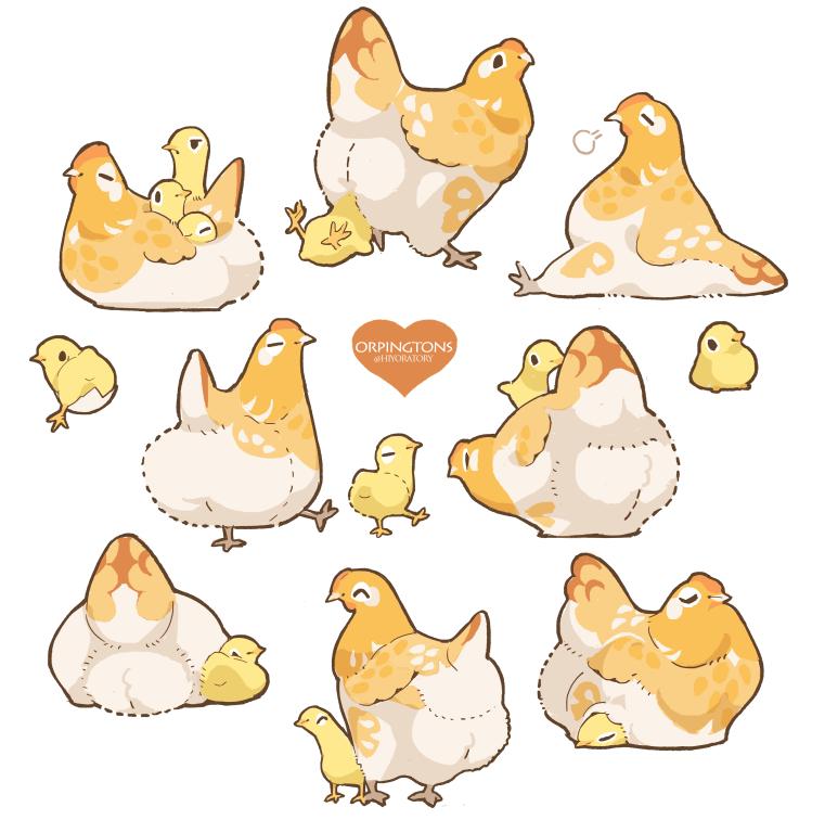 Orpington chicken!