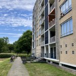 Opname gevelonderhoud VvE in Den Haag. Mooi project.