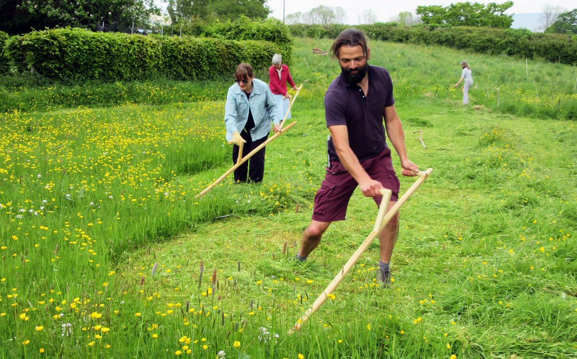 Last places left on our Scything Course. Learn this ancient skill with expert tuition. 15-16 July | Malham https://www.ydmt.org/events/scything-course-yorkshire…