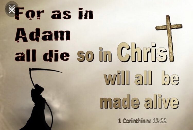 Scripture Of The Day: 1 Corinthians 15:21-22 King James Version (KJV)  21 For since by man came death, by man came also the resurrection of the dead.  22 For as in Adam all die, even so in Christ shall all be made alive. #JesusIsTheBridge #JesusSaves