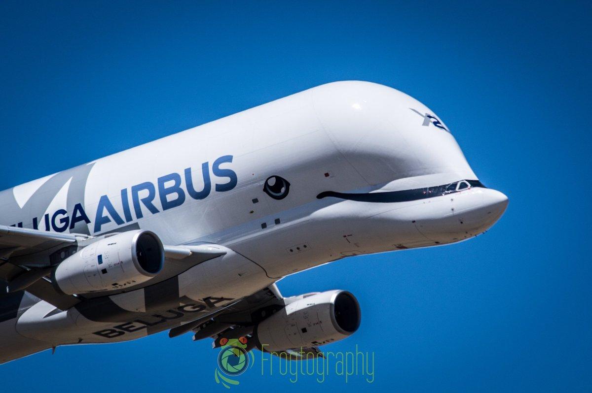 #Airbus #BelugaXL sobrevolando Getafe.