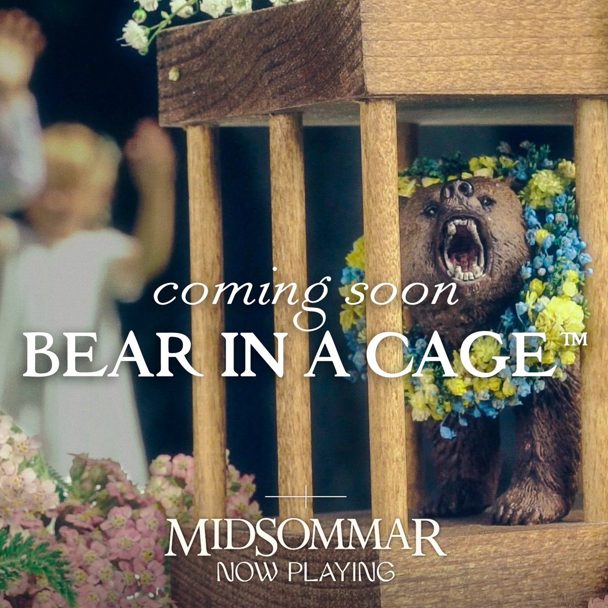 RT @A24: It's a bear. #Midsommar https://t.co/D9X7MwcbDN