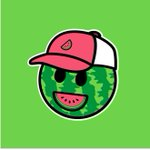 World, meet https://t.co/mtOoHSPqs1!  We'll finally have a place for our own racing merch!! But also watermelon branded stuff for life outside of racing.  We're going to update the site weekly with new designs, so if there isn't anything you like, check back next week! #NASCAR