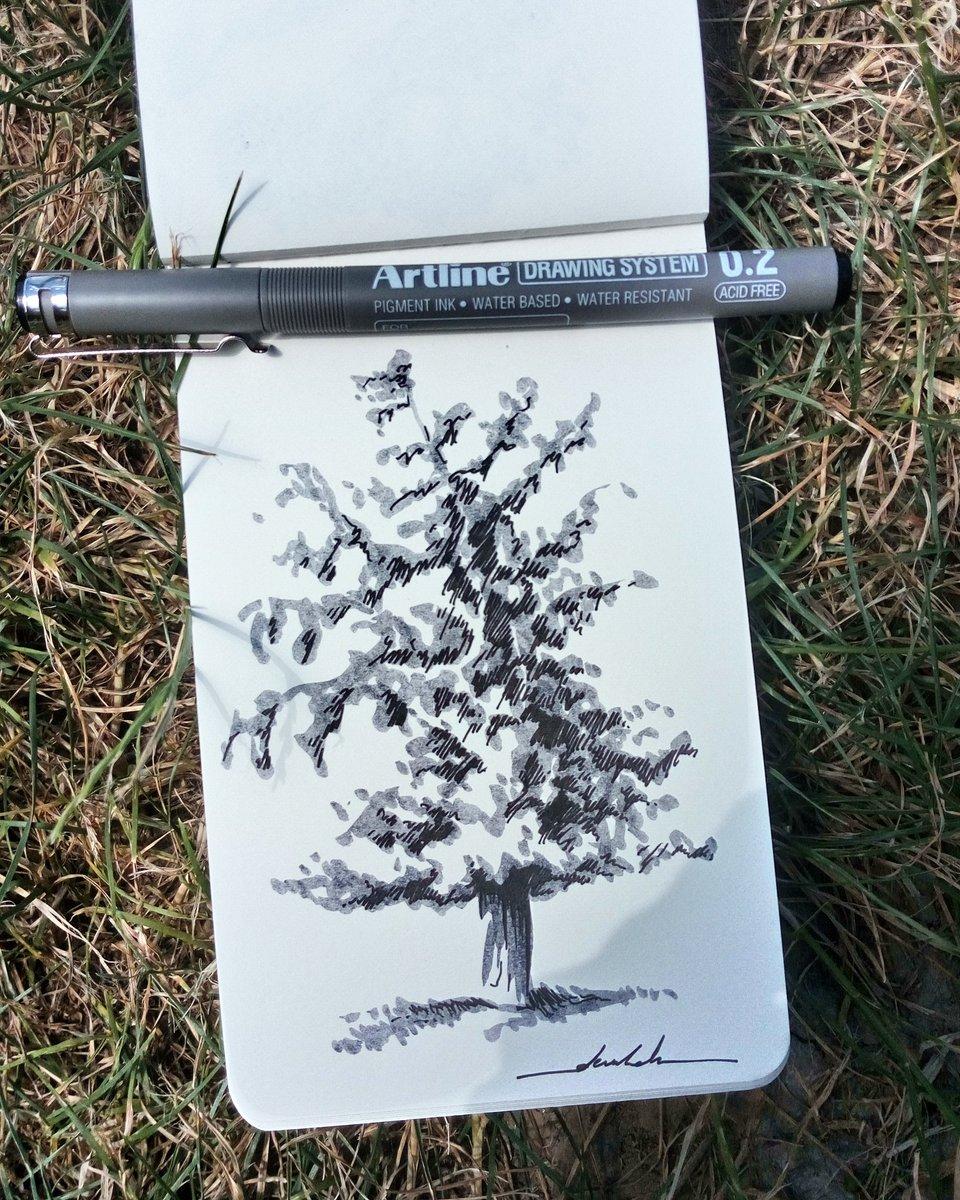 Tree #dailyart #dailyillustration #trees #nature #blackandwhitedrawing #brushpen #tree https://t.co/tWXrQ3Q7YX