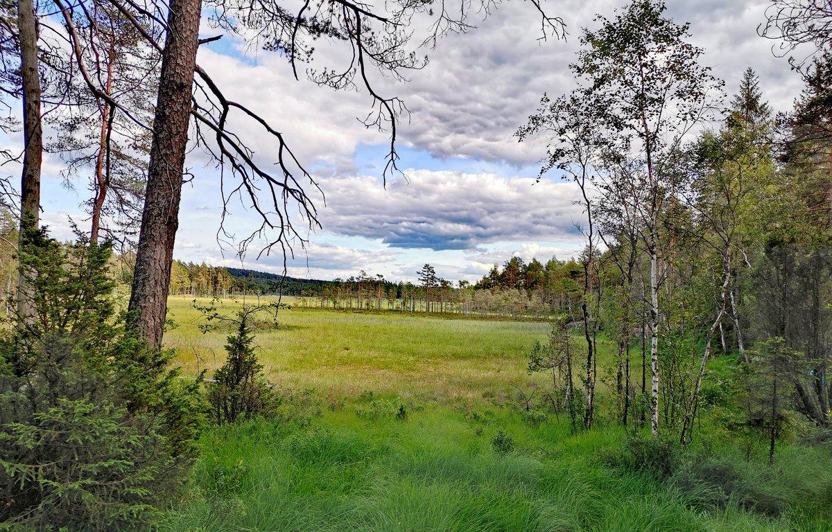 Indre Østfold today 😊 Photo Marie Peyre #Norway #hiking #travel #DNT @ostfoldfk @turistforening