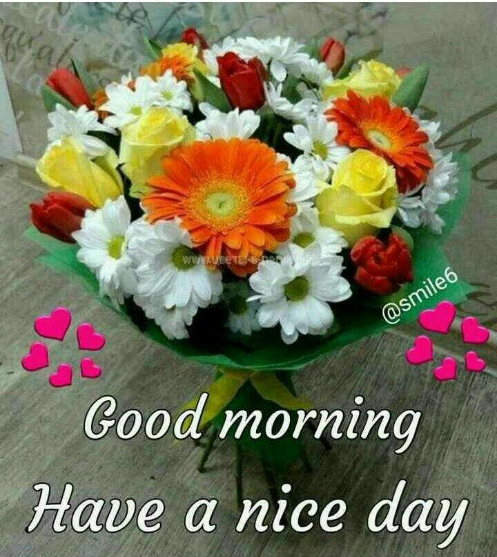 Hemalatha On Twitter Very Good Morning Sir Wish All Friends A Wonderful Morning And Great Day Good Wishes To All Jai Srikrishna Https T Co 1ah2u4foil