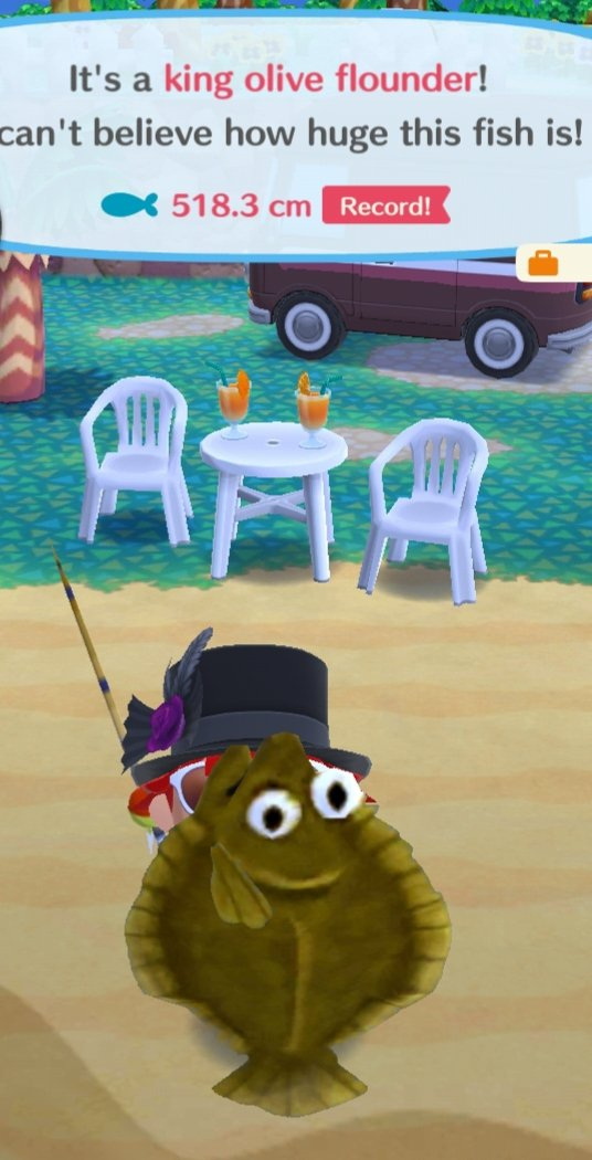 Animal Crossing Pocket Camp Uk Addict Acpcuk Twitter What can you do with it other than sell it or give it to an animal? animal crossing pocket camp uk addict