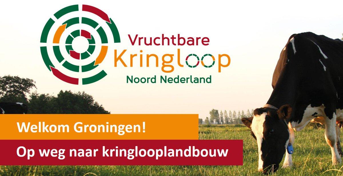 VKringloop photo