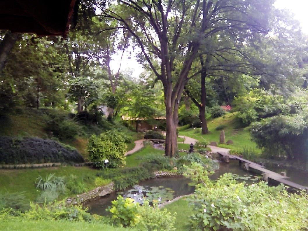 Botanička bašta Jevremovac, zaboravljeni raj u centru Beograda - Page 2 D_Gq2ZtWkAAUSXx