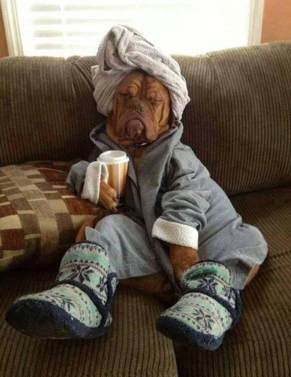 #CoffeeIn5Words Awakening from my beauty sleep