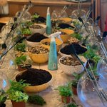 B.A.L.A.N.C.E - As one of our core values it's important to focus on our wellbeing and creating these terrariums in our office workshop was a perfect way to restore some balance and focus on our wellbeing. #WellbeingWednesday
