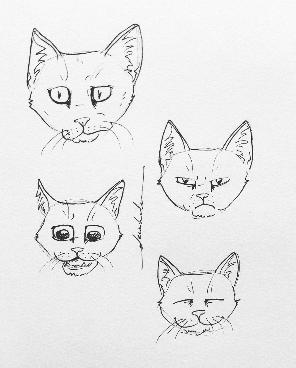 Just cats #dailyart #dailyillustration #cats #pets #animals #faces #expressions https://t.co/IM8dVXd4MR