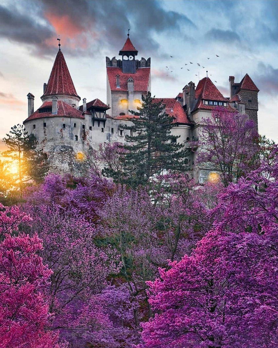 Bran Castle  (Dracula's Castle) Romania <br>http://pic.twitter.com/NGGYiGJdi5
