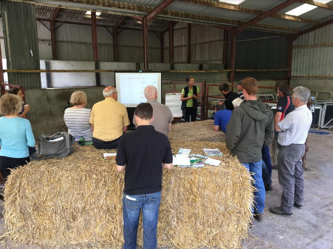 """Kate Phillips highlights benefits of multi species lays for lamb finishing. """"When weaning, you should consider feed availability on farm, ewe body condition and lamb growth rates. If growing at 200g per day or less, they should be weaned and moved on to better quality grazing."""""""