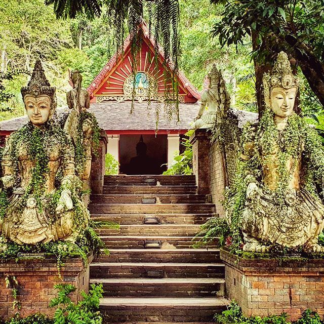 It's been a while since I visited this temple, but I'm happy to see it's still as peaceful and green as before. Definitely one of my favourite temples in the city!  #templevisit #hiddengems #thailand #chiangmai #reviewthailand #opentothenewshades #เที่ยว…  https:// ift.tt/2JDGuWK    <br>http://pic.twitter.com/DDgWHF5Vxh