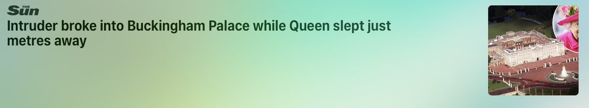 Why isn't someone making sure she sleeps indoors?
