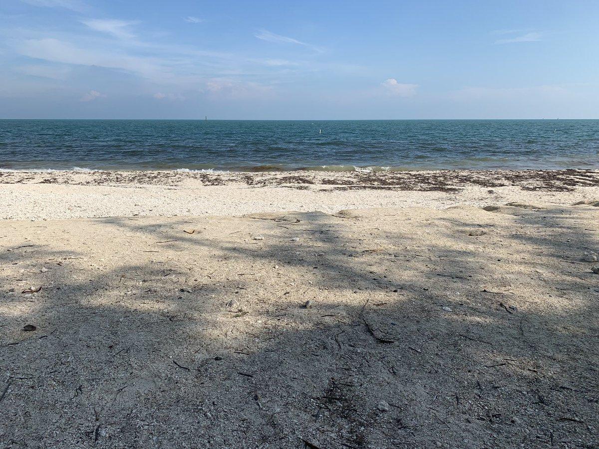 He pagado 7$ solo por entrar a esta playa en Key West... no tiene servicios, ni socorrista.... la arena son piedras ... y el agua está marrón por algas. Los americanos sí que saben hacer negocio.... La playa de la concha debería cobrar 20€ a los yanquis por entrar