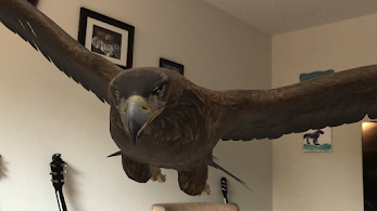 A1b: Oh, and a horse and Cheetah! Here's the eagle in my living room. #ARVRinEDU