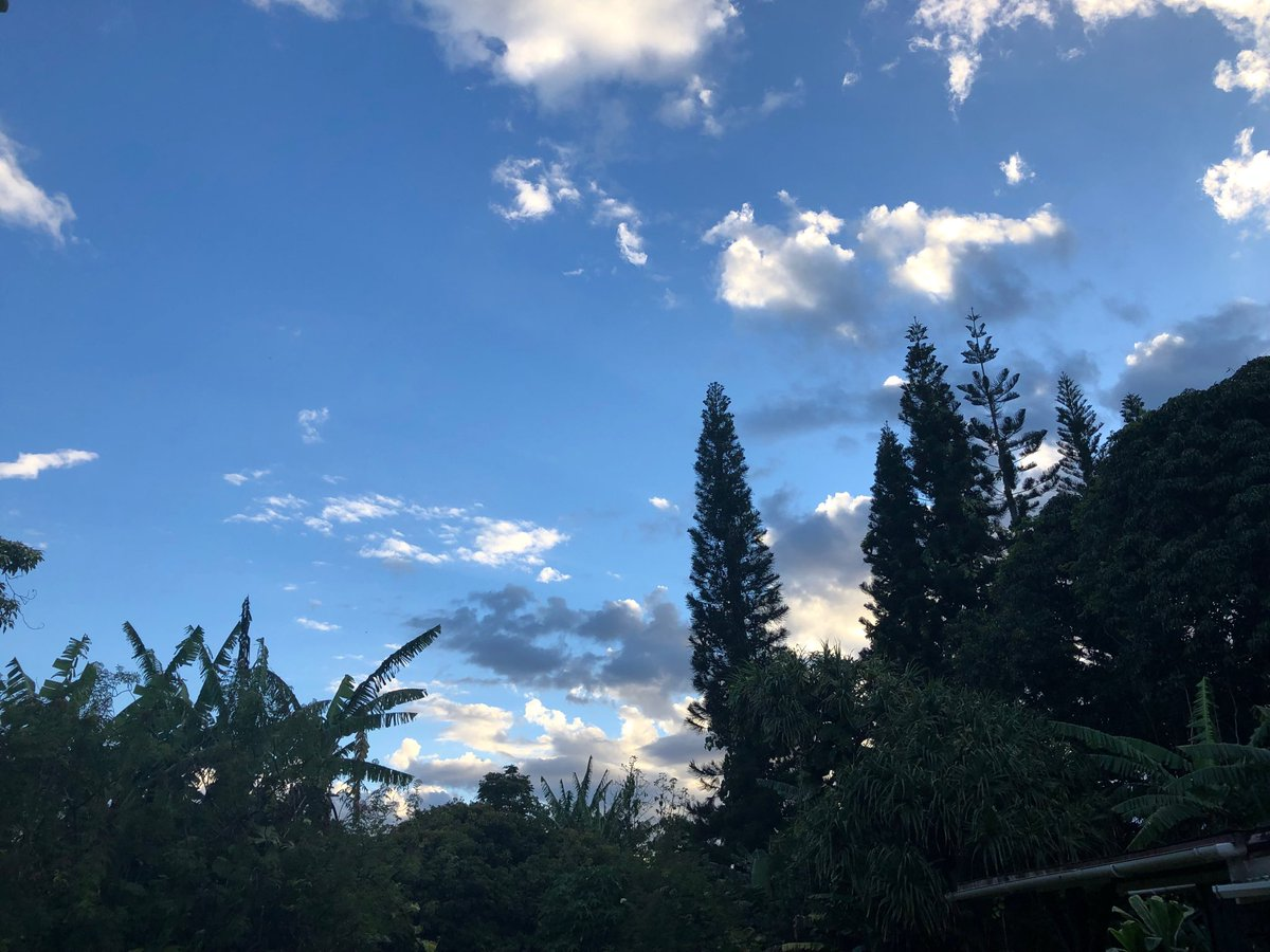 test Twitter Media - Calm beautiful evening in Haiku. #cmweather #Maui https://t.co/uuDYRACkvi