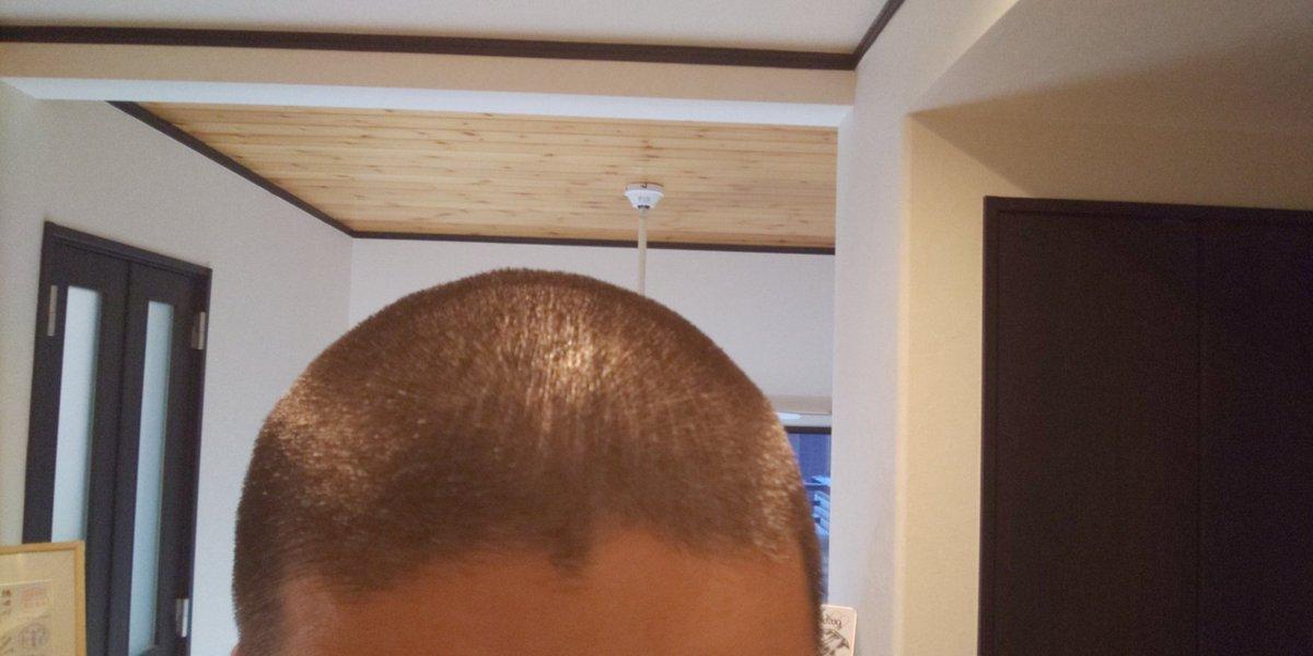 頭刈りました。前回より短いです(笑)悪いことはしてません。 #坊主頭 #6mm #髪の毛が伸びるのが早い