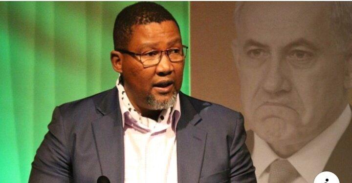 Nieto de Nelson Mandela, Nkosi Zwelivelile Mandela, se dirigió a la multitud en la Expo de Palestina en Londres: Israel es un estado de apartheid, y punto.