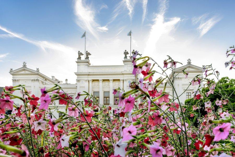 Är du en av de som antagits till några av höstens utbildningar här i Lund? Stort grattis i så fall! https://www.lu.se/article/forsta-antagningen-till-hostens-utbildningar-klar-2…