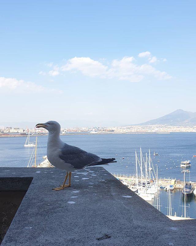 . . Memories of Naples 27/07/19 . . #napoli  #lungomaremergellina  #mare  #tempo  #campania  #giugno https://ift.tt/2NNMuSmpic.twitter.com/eeNGTBQ9xh
