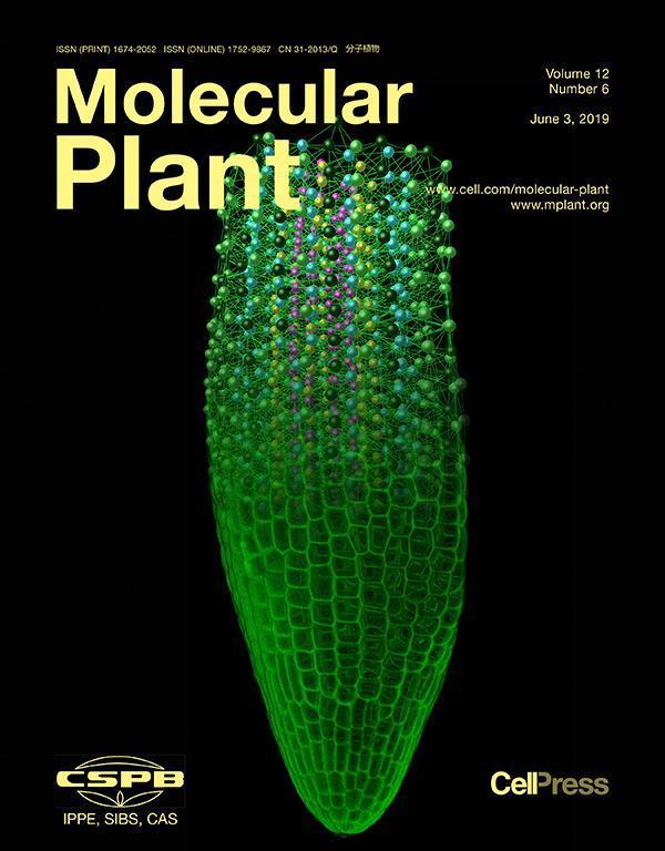 read Environmental radiochemical analysis V 2015