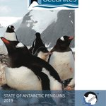 Image for the Tweet beginning: Challenges for Antarctic Penguins as