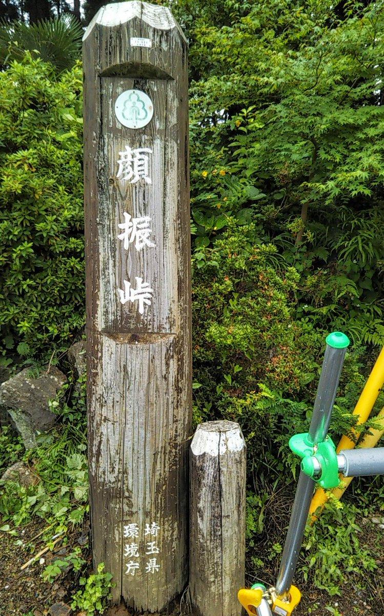 #ホームスクール遠足近くの平九郎茶屋は平を倒した九郎義経って意味と思ったら渋沢栄一の息子の渋沢平九郎の事だとR君が教えてくれた。『戊辰戦争から逃れて此の近くに隠れててどうしようもなくなってね?』って悲しそうだった。悲しい最後だったけど後から谷中の渋沢家のお墓に入れたと明日話そう。