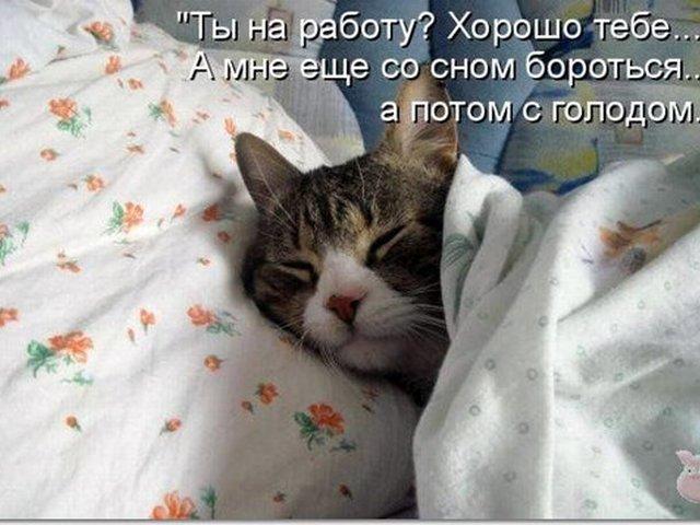 Открытка спишь еще, комплимент подружке