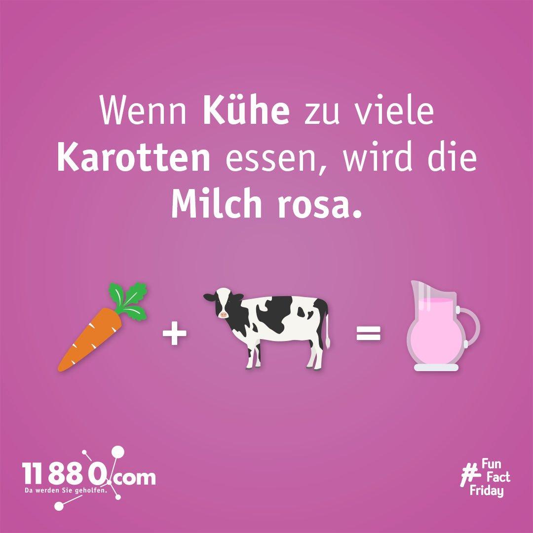#funfactfriday #dawerdensiegeholfen #11880com #faktenfreitag #kuh #milch #rosa #cow #cowfacts #cowstagram #pinkmilk https://t.co/lRQiU926bw
