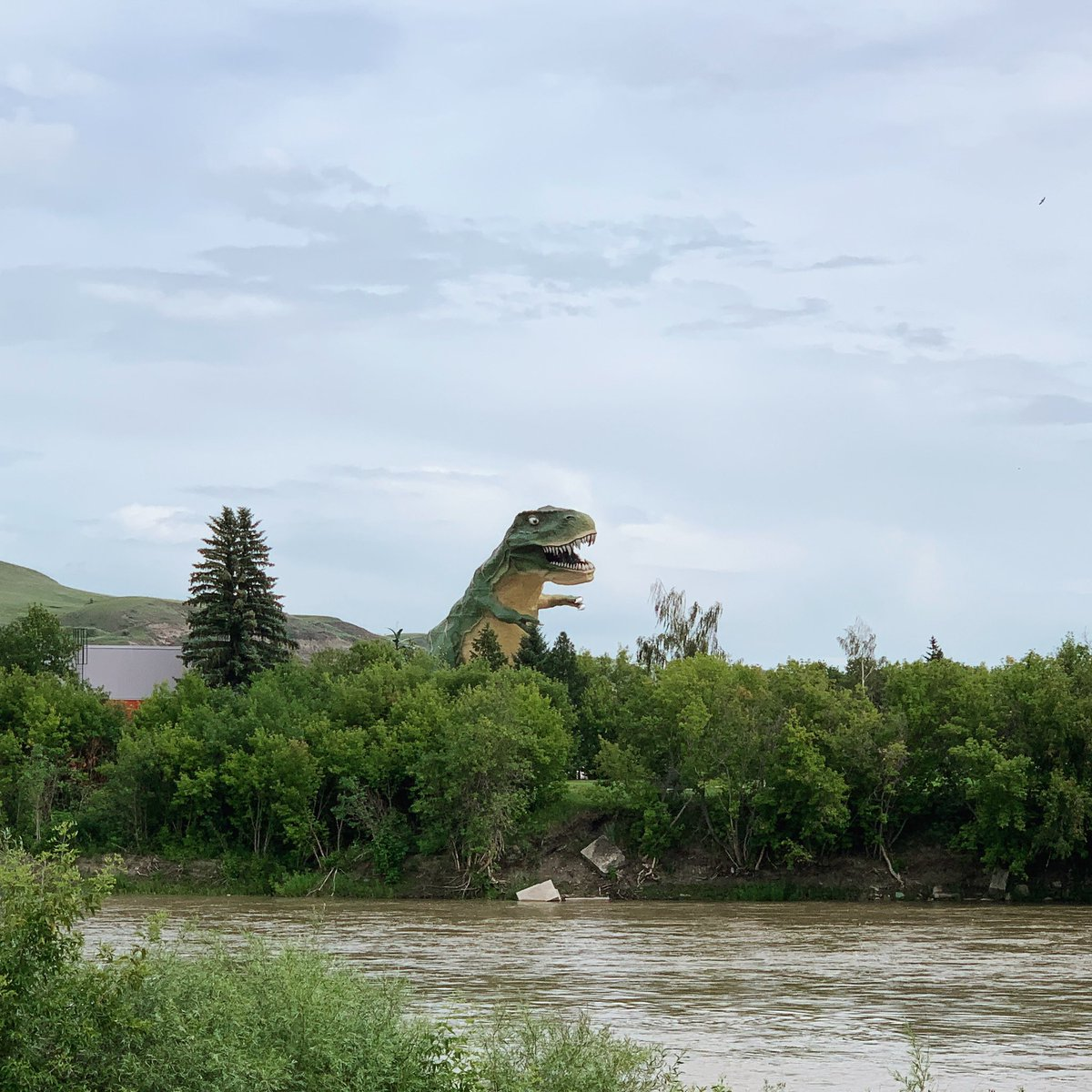 #SignsThatYouLiveInThePast - when you randomly see this on #SummerVacation. Who doesn't love #Dinosaurs?  #WorldsLargestDinosaur  Happy #Thursday! #Dinosaur #Triassic #Jurassic #Cretaceous #Predator<br>http://pic.twitter.com/oygsxm2pGi