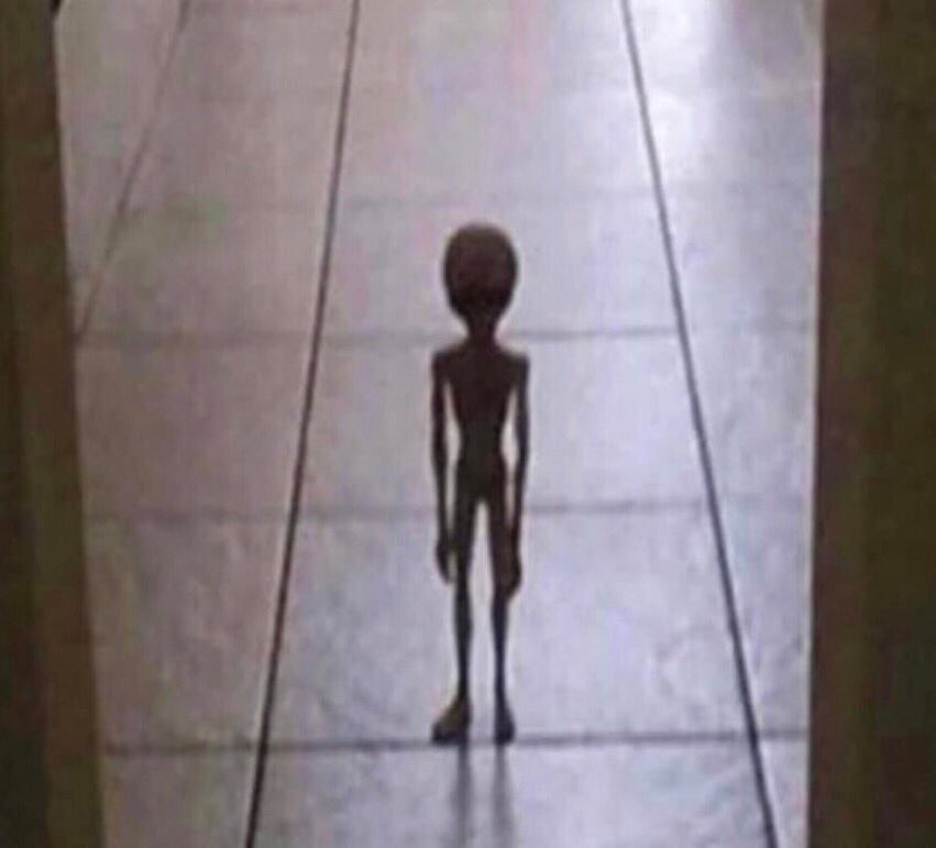 """The alien I took from Area 51 standing outside my room to tell me """"I frew up"""""""