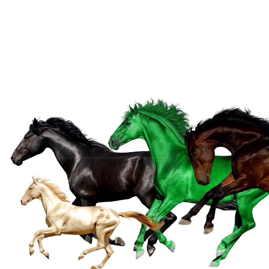 OLD TOWN ROAD FT. BILLY RAY CYRUS, YOUNG THUG, & MASON RAMSEY !!!! 🤠🤠🤠🤠 OUT NOW 🐎⚡️🚨