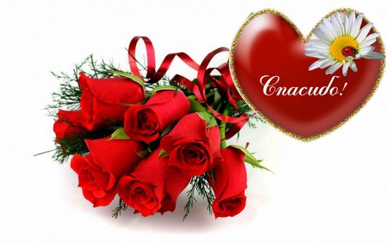Спасибо за подарки всем открытка, цветы телефон
