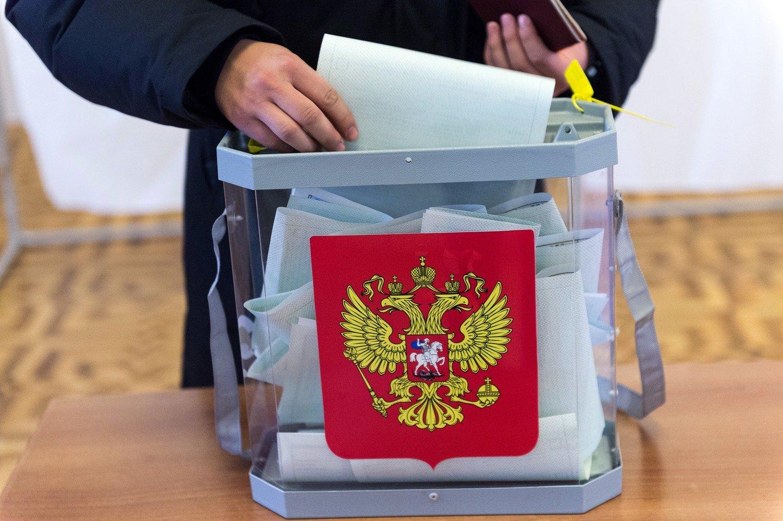 На выборы картинки