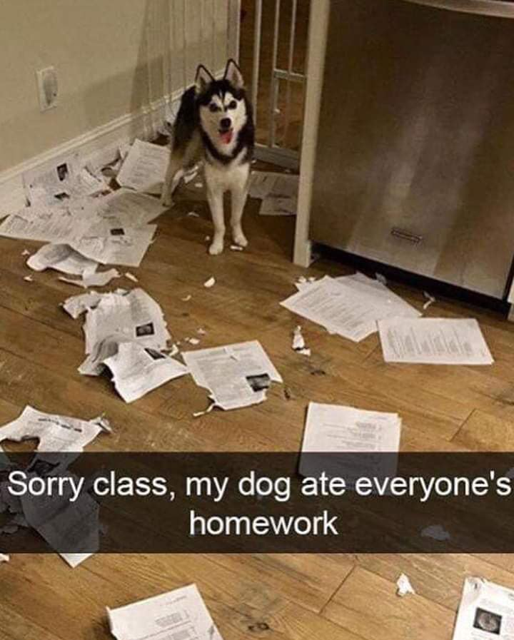 """Simply Novel on Twitter: """"Sorry, class...the dog ate your homework ..."""