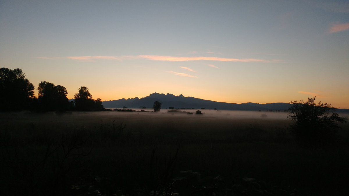 Sharing my blissful twilight with the Twitter world  #fridaymorning #beautifulBC #pittmeadows<br>http://pic.twitter.com/kYwHZTAklY