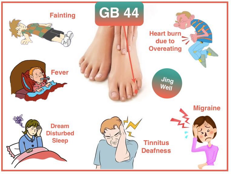 GB 44 is a great acupuncture point for high fever, fainting