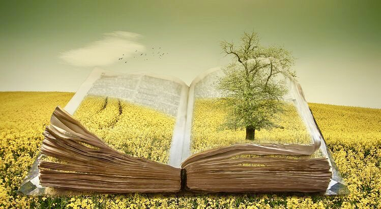 ❦Every new chapter we encounter is essential to the story, sunshine or rain, in the album of our lives. ~Anne Scottlin #lifequotes #fridayfeeling #ChristineEllger #Art #fridaymotivation #fridaythoughts<br>http://pic.twitter.com/6yg2bwOyFO