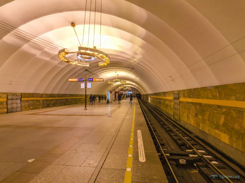 станция метро новочеркасская картинки этого растения один