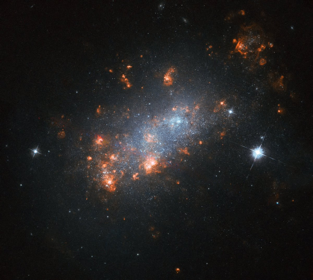 Cherry blossoms may have flowered months ago but the galactic version is always in bloom 🌸 The many bright blooms within this cherry blossom-resembling galaxy are in fact stellar nurseries — regions where new stars are springing to life. Uncover more: go.nasa.gov/2JuLMoF