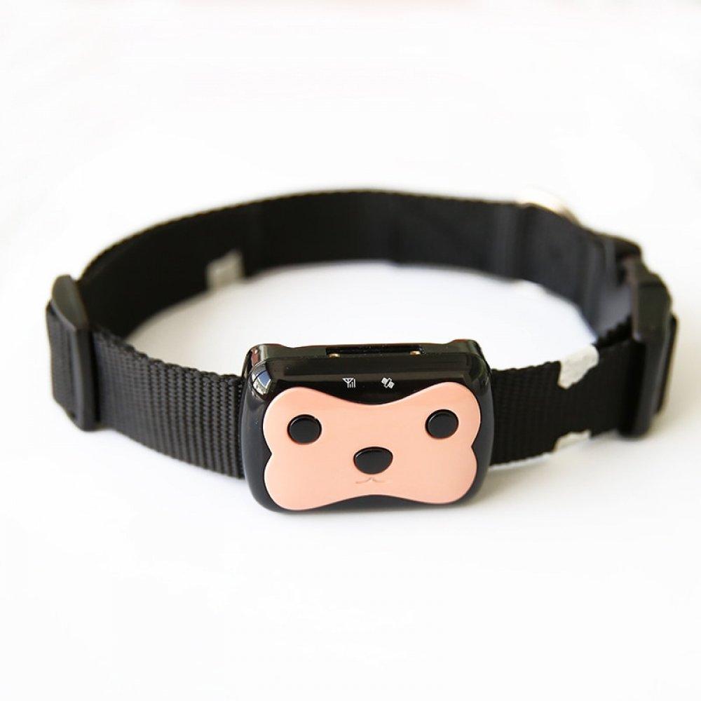 #petsupplies Smart GPS Tracker With Collar <br>http://pic.twitter.com/1jSeeygLj6
