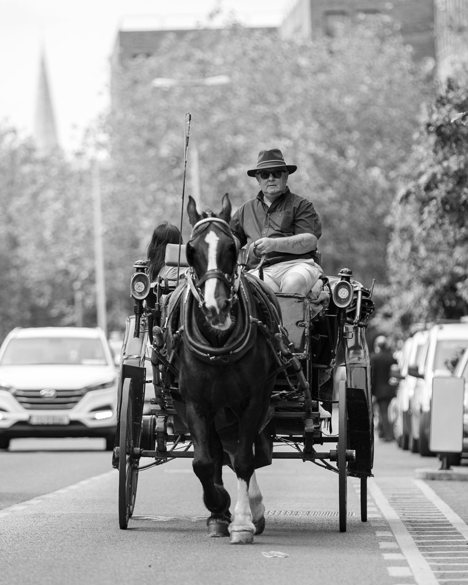 #ireland #irelanddaily #irish #dublin #travel #discoverdublin #dublincity #lovedublin #instagood #happy #visitdublin #dublindaily #dailyphoto #picoftheday #blackandwhite #canon5dsr #canon #igersdaily #streetphotography #bnw #tourism#town#urban #horseandcarriage #urbanhorse